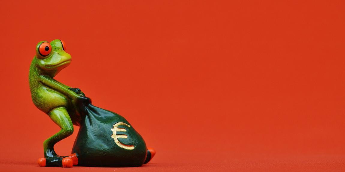 Sammakko raha