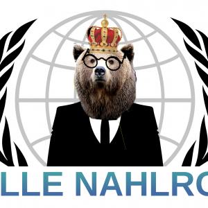 Walle Nahlroosin logo
